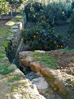 10agrigento Kolymbetra Garden 12 ill