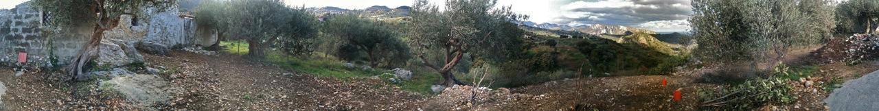 10caccamo Yelton Landscape 4 Xvga
