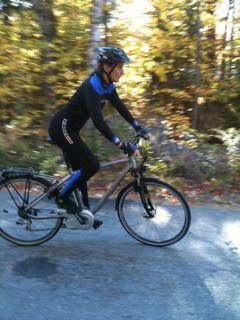 10lucerne Electric Bike 21
