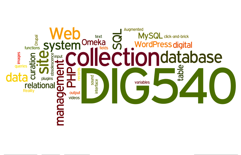 Dig 540 Wordle Warm